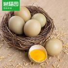 宜昌林下放养 野鸡蛋 20枚*盒 土鸡蛋 新鲜鸡蛋