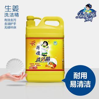 荷嫂 生姜洗洁精瓶装1.25kg果蔬家用清洗剂厨房餐具专用洗碗液