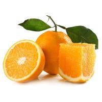 新鲜水果橙子 现摘秭归纽荷尔脐橙橙子5斤装