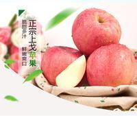 上戈红富士苹果 新鲜脆甜苹果 规格70-80mm 约十斤装