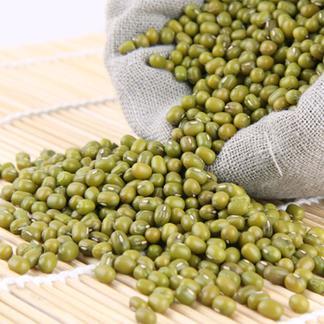 天瑞优品绿豆500克*2包