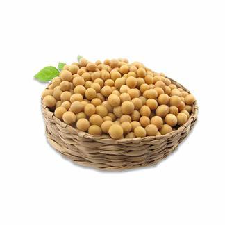 天瑞优品黄豆500克*2包